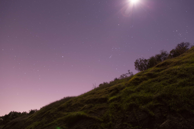 2015-06-Life-of-Pix-free-stock-photos-night-grass-stars-jordanmcqueen