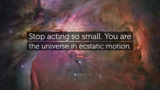 The universe in ecstatic motion