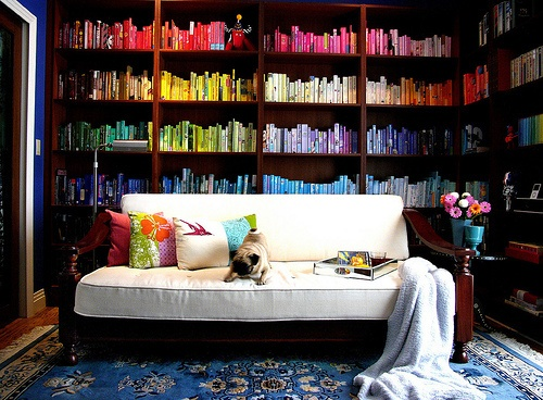 colourful bookshelf
